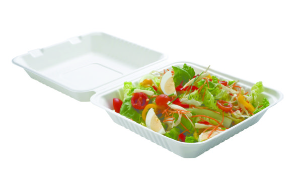 VAISSELLE JETABLE BIODEGRADABLE BAGASSE